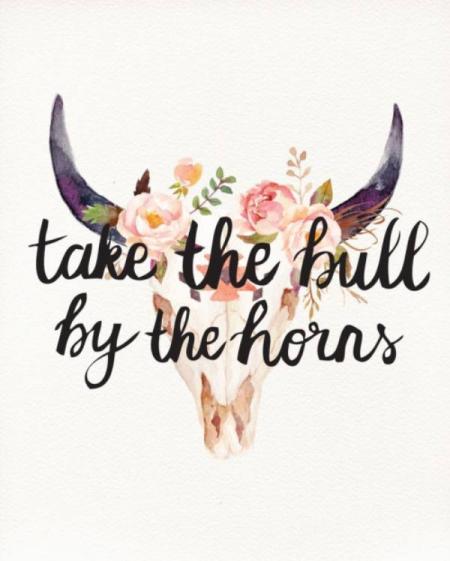 bull-quote